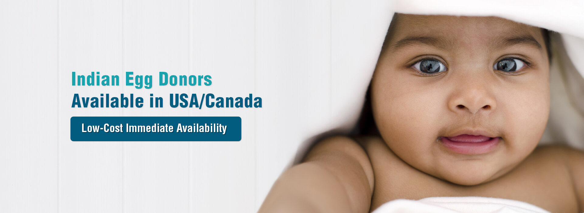 Indian Egg Donors Available in USA /Canada