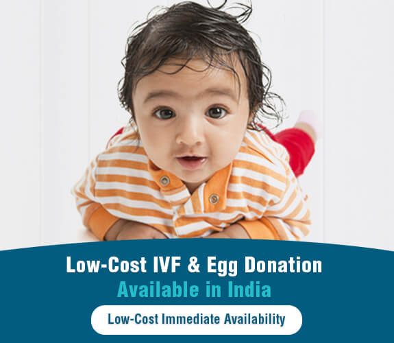 Low-Cost IVF & Egg Donation Available in India